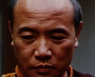 Le Seizième Vainqueur Karmapa